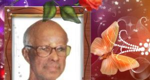திரு இளையதம்பி பரமநாதன் குப்பிளான் - கனடா 11 ஆடி 2018